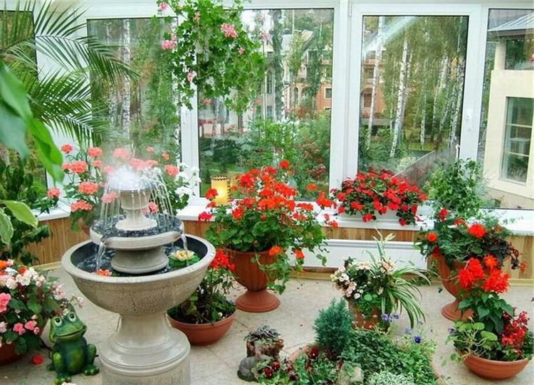 Зимний сад в квартире.