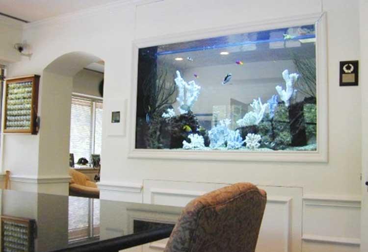 Как красиво сделать аквариум фото 815