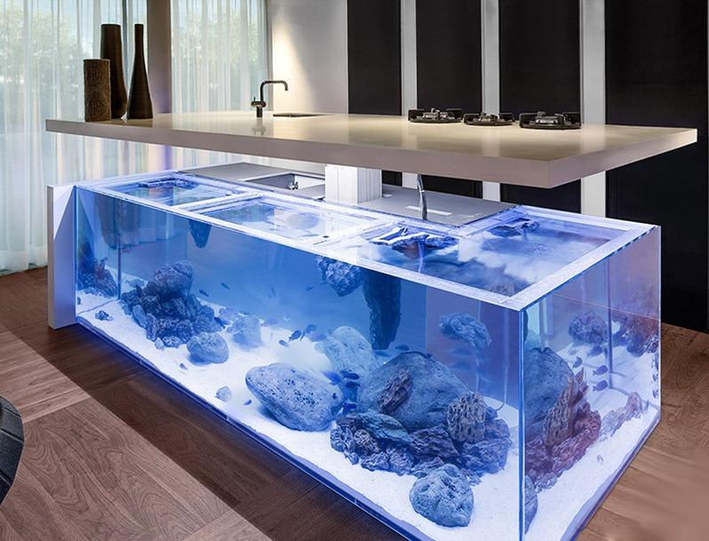Главный же недостаток сухого аквариума заложен в самом названии.