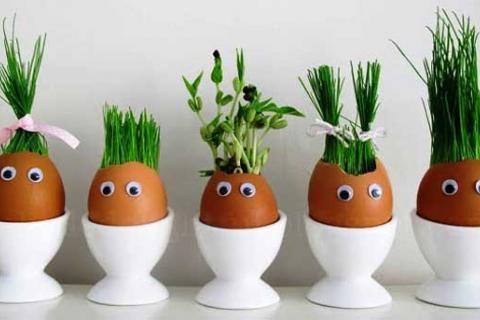 забавные яйца-кашпо