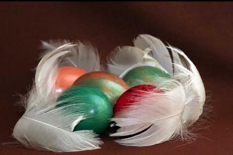 цветные яйца, украшенные перышками