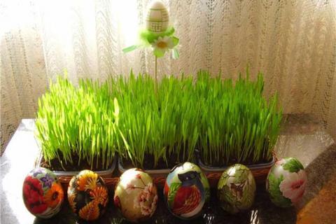 декоративные яйца на фоне зелени