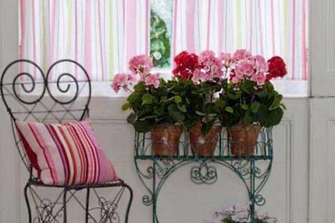 азалии в сочетании с розовым декором