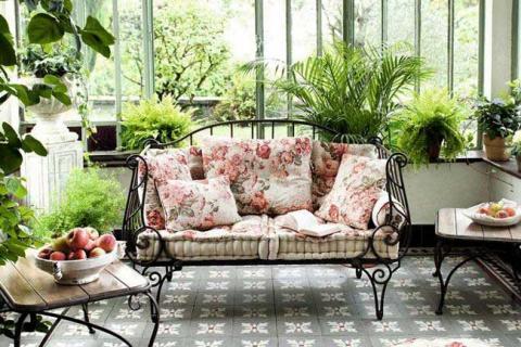 комнатные цветы на террасе