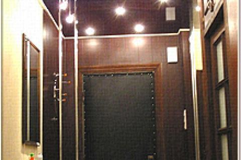 встроенные в блестящий темный потолок светильники