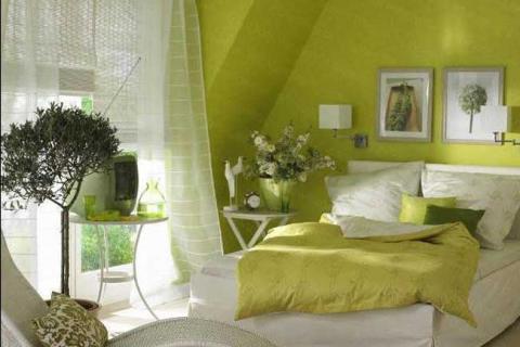 спальня в травянистом цвете