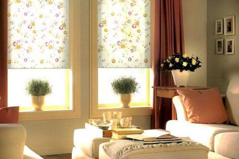рулонные шторы в цветочек в гостиной