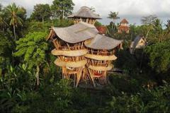 Дома из бамбука