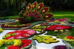 декоративное садоводство в Москве