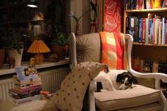 кресло в  уютной маленькой гостиной
